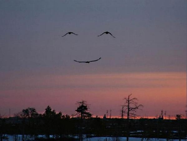 Sky smiles