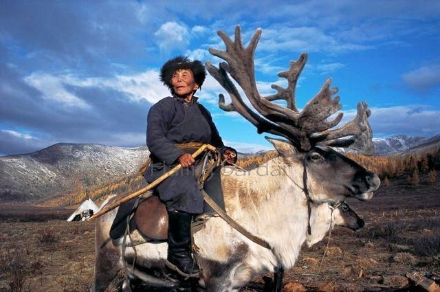 Mongolian tribe, man riding reindeer